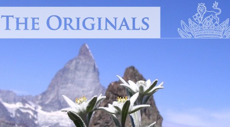 NEW SERIES 'THE ORIGINALS'
